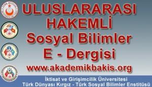 akademik-bakis-dergisi